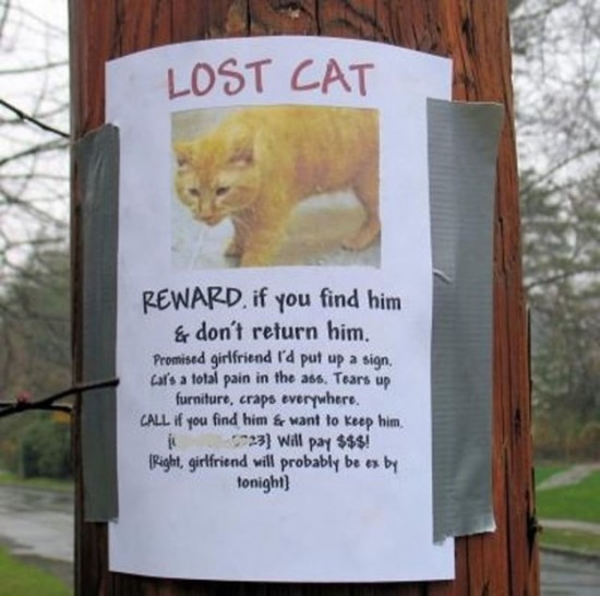 Clever-Variations-of-the-Average-Lost-and-Found-Sign-004