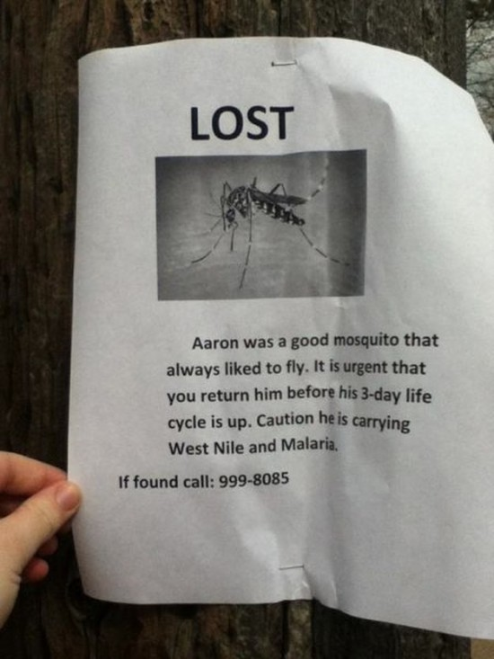 Clever-Variations-of-the-Average-Lost-and-Found-Sign-014