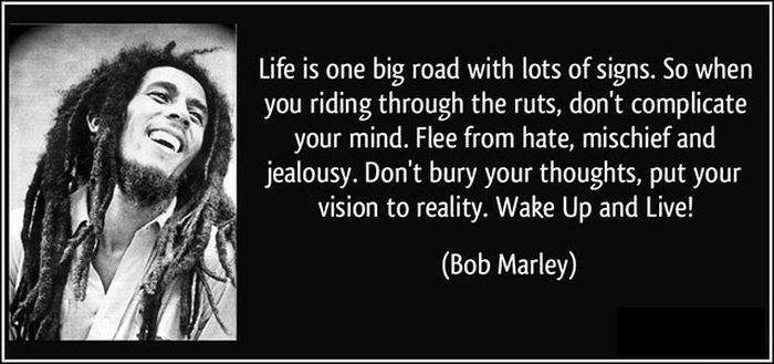 Bob Marley Quotes About Friendship Delectable Friendship Quotes From Bob Marley Bob Marley Quotes Only Once In