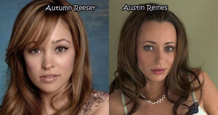 Celebrities that have pornstar doppelgangers