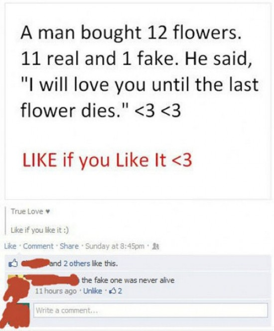 28 Funny Facebook Comments - FunCageFunny Facebook Graphics