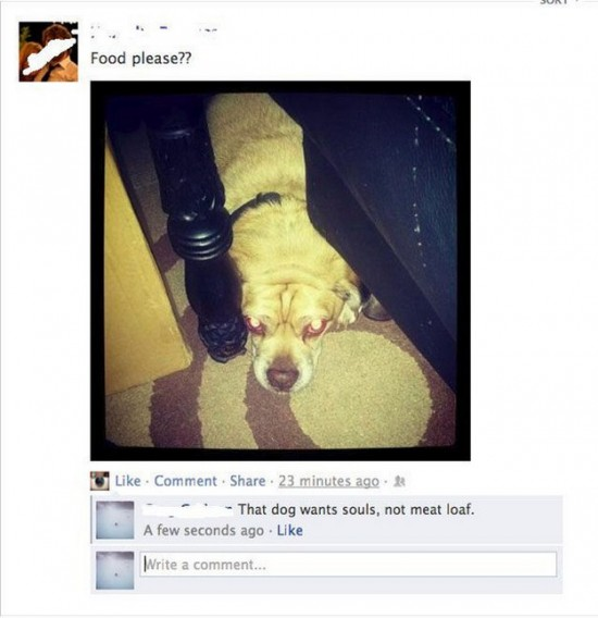 Funny-Facebook-Comments-015