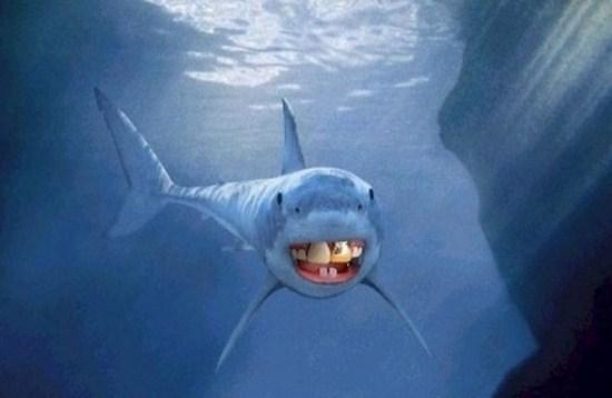 Sharks with human teeth - photo#17