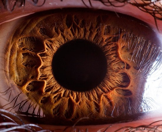 21 Extreme Close Ups of the Human Eye001