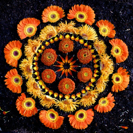 Flower Mandalas by Kathy Klein 001