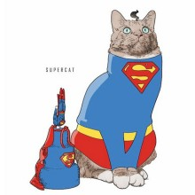 Pop Culture Icons Re-imagined as Cats 001