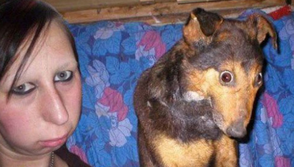 Dog Owners That Look Like Their Dogs 26 Dogs That Look Like Their
