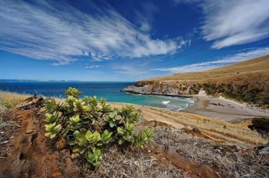 Deep Creek Conservation Park, South Australia