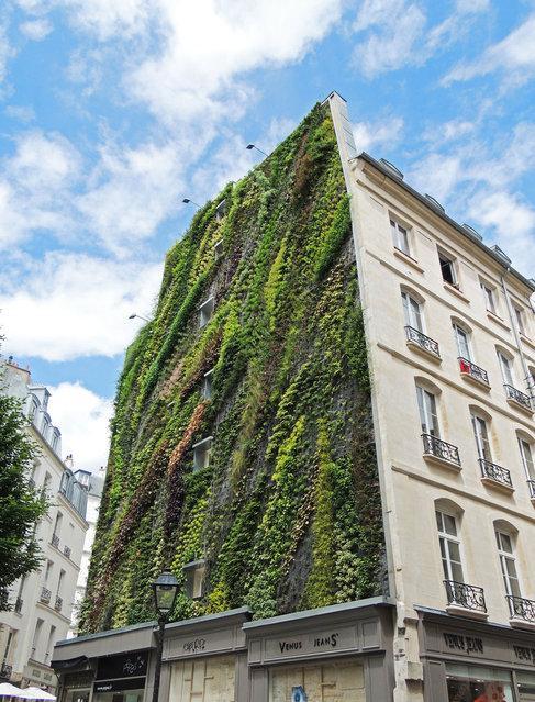 Vertical Garden – By Patrick Blanc in Madrid, Spain 001