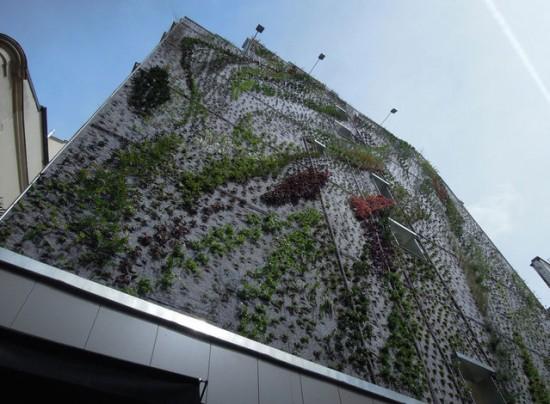Vertical Garden – By Patrick Blanc in Madrid, Spain 005
