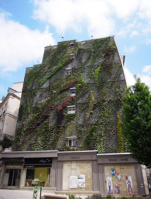 Vertical Garden – By Patrick Blanc in Madrid, Spain 006