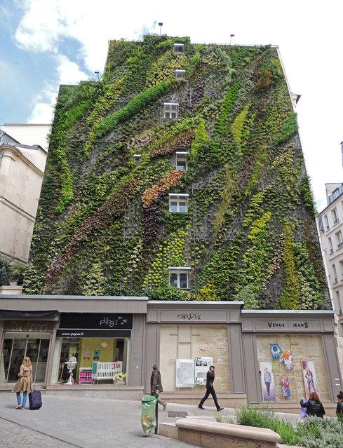 Vertical Garden – By Patrick Blanc in Madrid, Spain 007