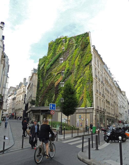 Vertical Garden – By Patrick Blanc in Madrid, Spain 009