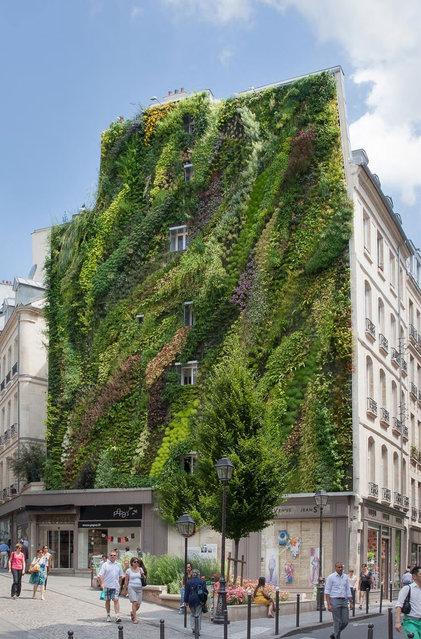 Vertical Garden – By Patrick Blanc in Madrid, Spain 010
