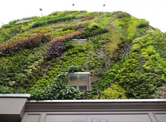 Vertical Garden – By Patrick Blanc in Madrid, Spain 011