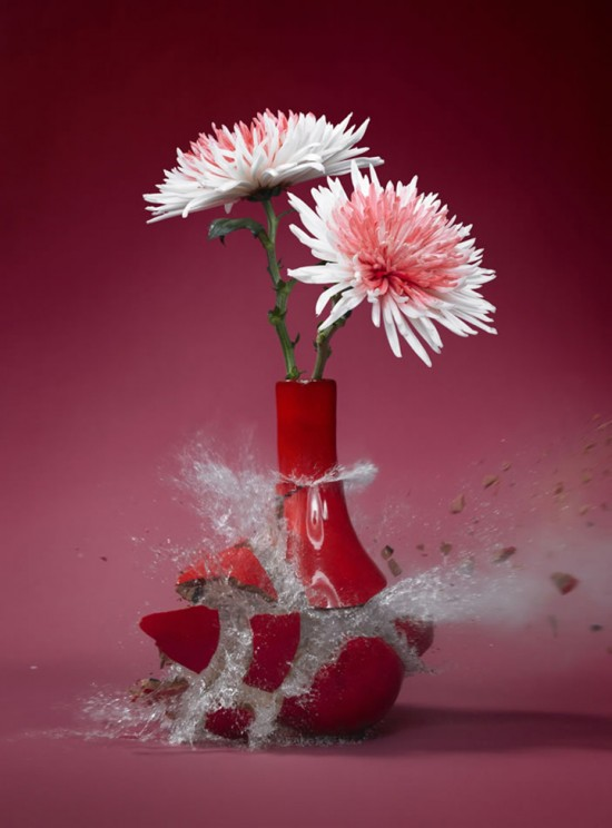 These high-speed photos capture delicate flower vases shattering in mid-air 001