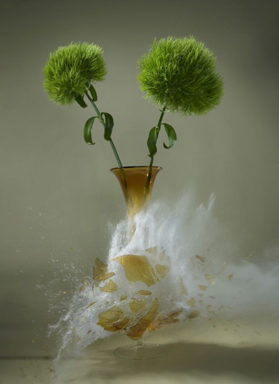 These high-speed photos capture delicate flower vases shattering in mid-air 002