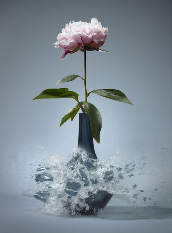 These high-speed photos capture delicate flower vases shattering in mid-air 004