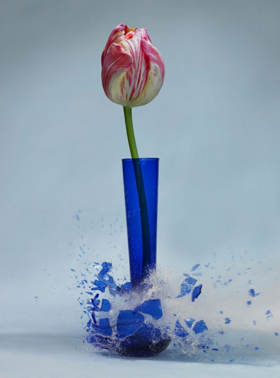 These high-speed photos capture delicate flower vases shattering in mid-air 005
