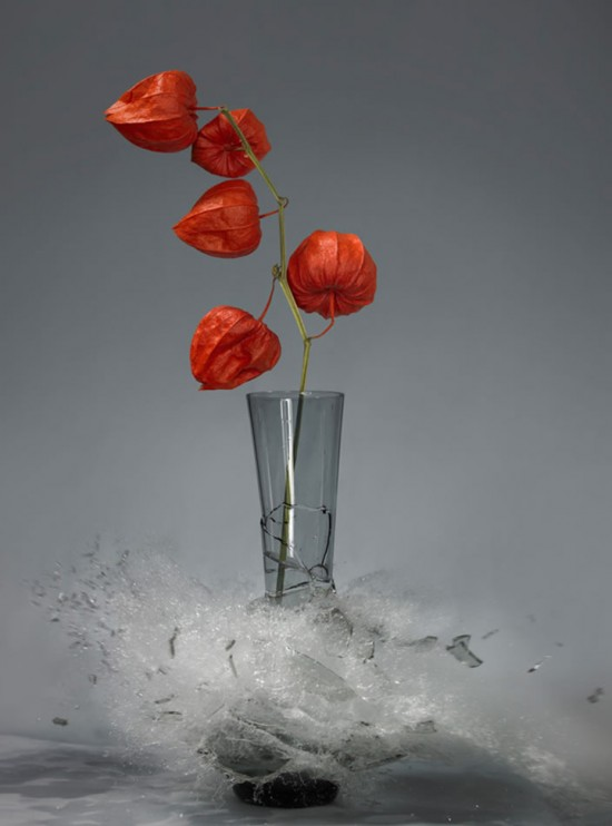 These high-speed photos capture delicate flower vases shattering in mid-air 006