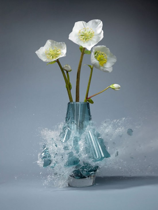 These high-speed photos capture delicate flower vases shattering in mid-air 008