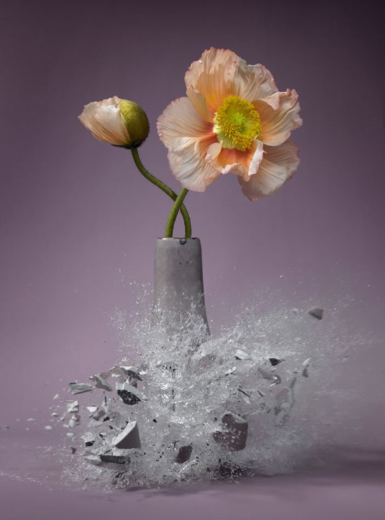 These high-speed photos capture delicate flower vases shattering in mid-air 009