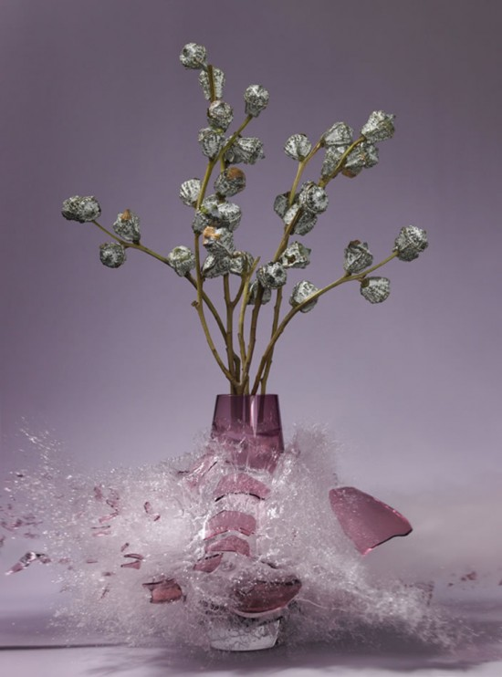 These high-speed photos capture delicate flower vases shattering in mid-air 011