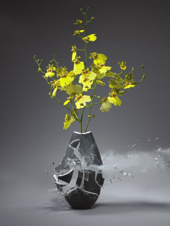 These high-speed photos capture delicate flower vases shattering in mid-air 012