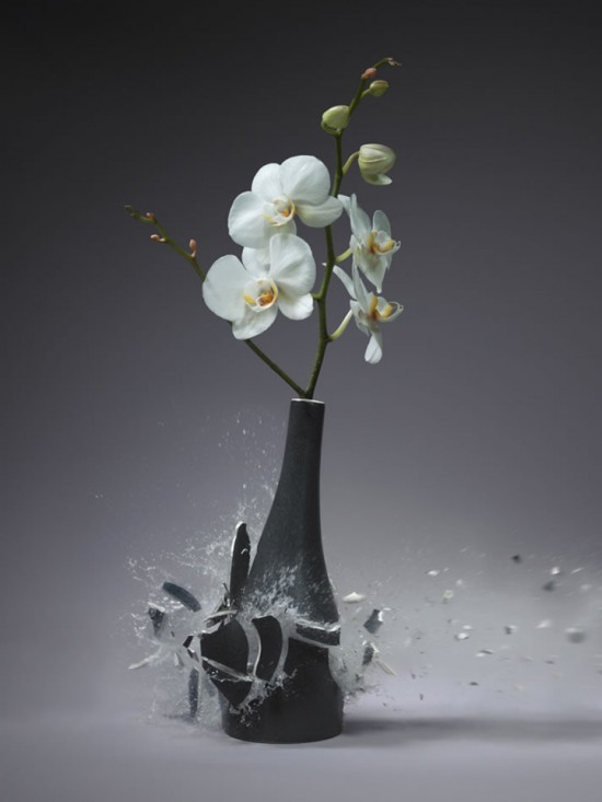 These high-speed photos capture delicate flower vases shattering in mid-air 015