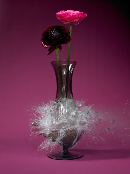 These high-speed photos capture delicate flower vases shattering in mid-air 016