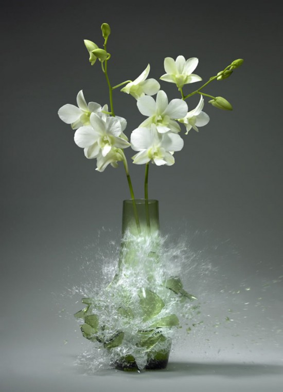 These high-speed photos capture delicate flower vases shattering in mid-air 017