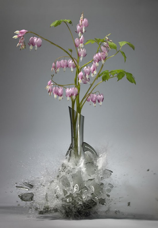 These high-speed photos capture delicate flower vases shattering in mid-air 019