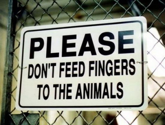 Funny-Animal-Signs-001