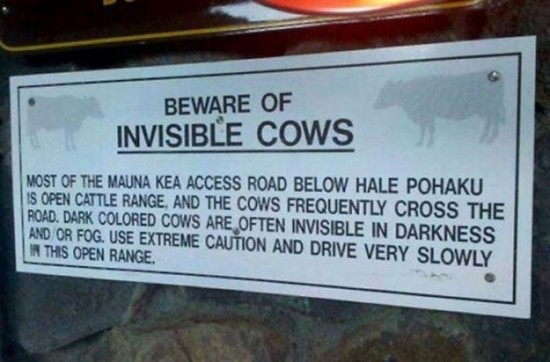 Funny-Animal-Signs-011