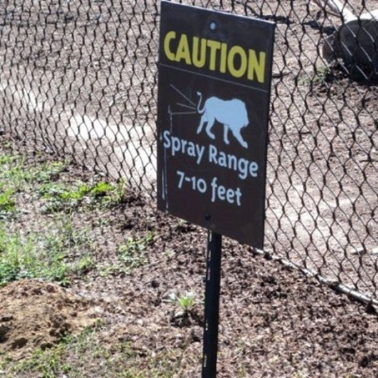 Funny-Animal-Signs-014