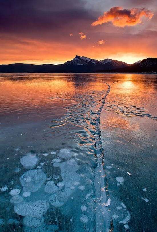 Incredible-ice-bubbles-in-Lake-Abraham-005