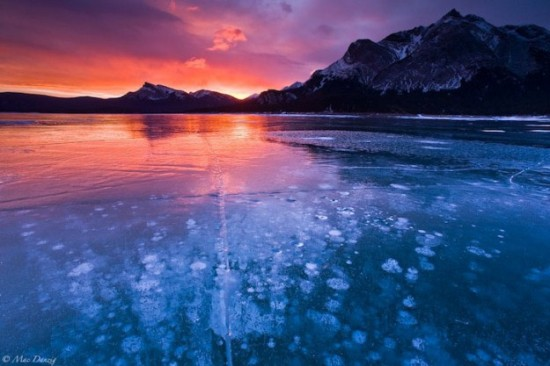 Incredible-ice-bubbles-in-Lake-Abraham-008
