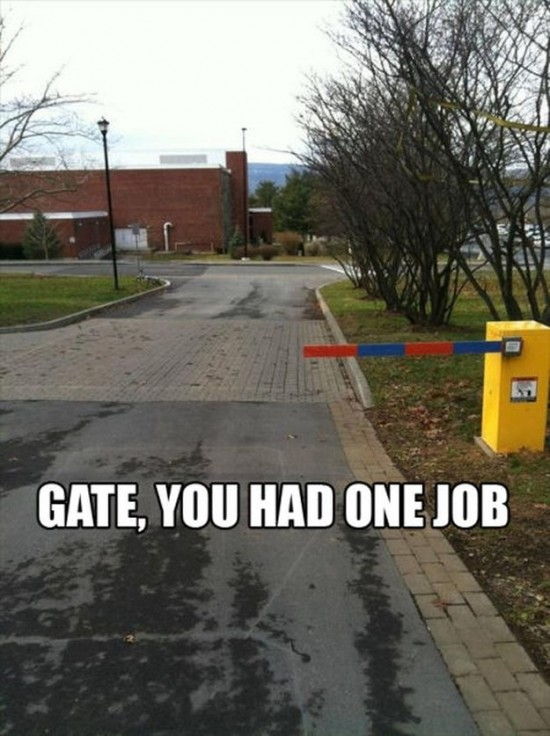 If-You-Only-Have-One-Job-to-Do-015