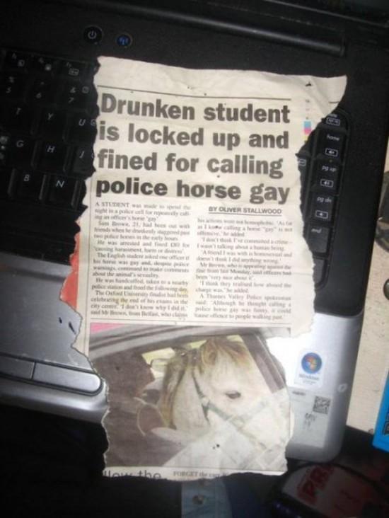 Go-home-headlines-016