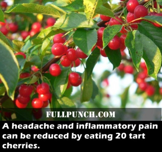 24-Fascinating-Health-Facts-001