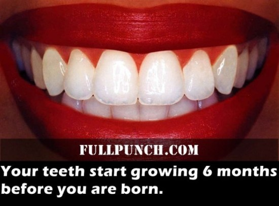 24-Fascinating-Health-Facts-005