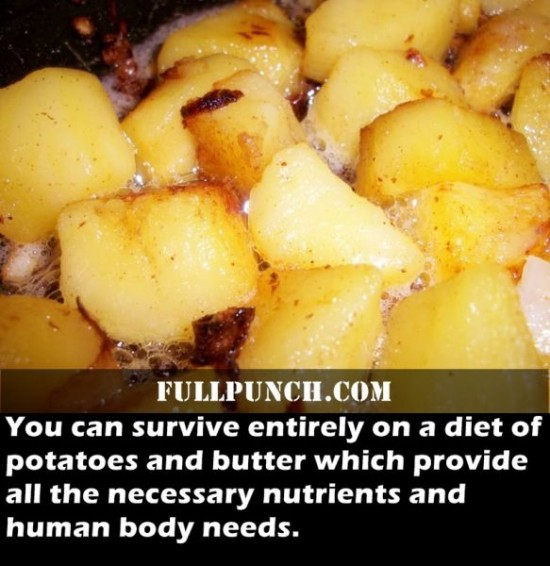 24-Fascinating-Health-Facts-016
