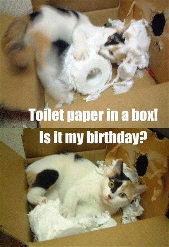 Funny-Pictures-Of-The-Day-025