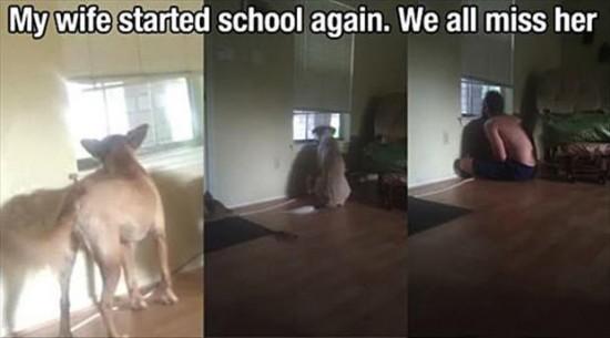 school-started