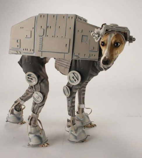 20-Funniest-Dog-Halloween-Costumes-018