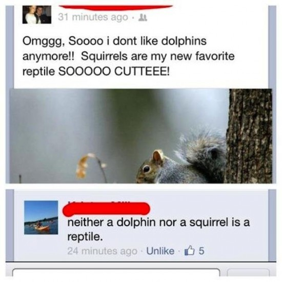 The-Dumbest-Things-Ever-Posted-On-Facebook-018