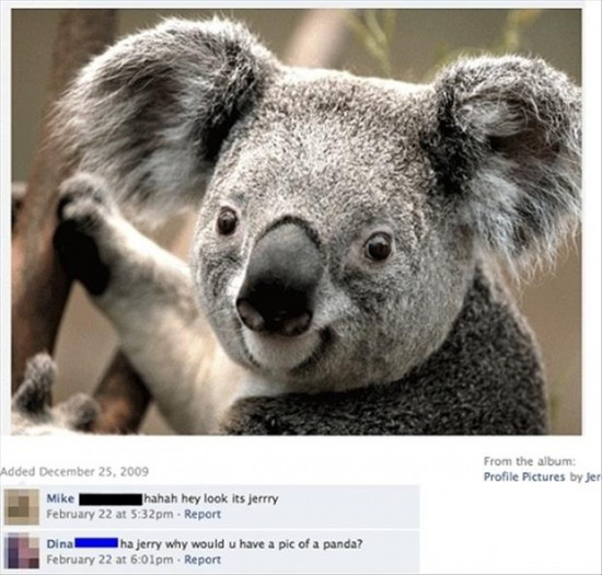 The-Dumbest-Things-Ever-Posted-On-Facebook-034