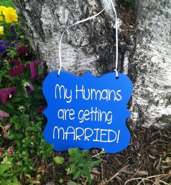 15-Ways-To-Make-Your-Wedding-Funnier-004