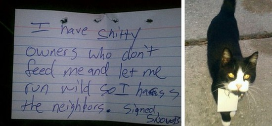 25 Funniest Passive-Aggressive Notes Of This Year008