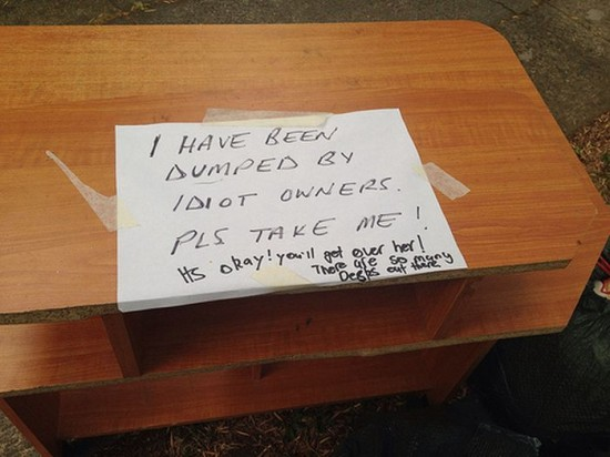 25 Funniest Passive-Aggressive Notes Of This Year019